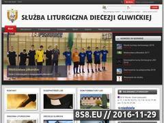 Miniaturka domeny www.lso.gliwice.pl