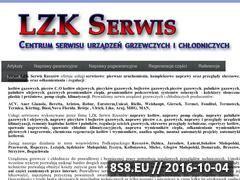 Miniaturka domeny lzkserwis.pl