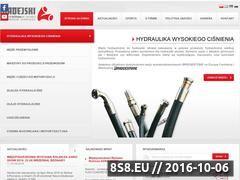 Miniaturka domeny www.madejski.com.pl