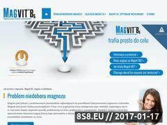 Miniaturka domeny www.magvit.com.pl