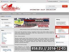 Miniaturka domeny makaki.pl