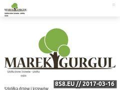 Miniaturka domeny marekgurgul.pl