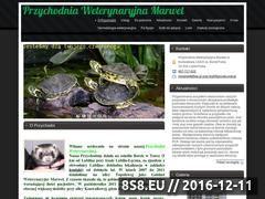 Miniaturka domeny www.marwet-turka.pl