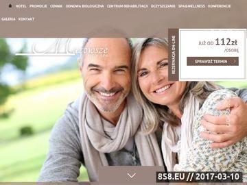 Zrzut strony Noclegi w Ustroniu i SPA