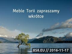 Miniaturka domeny meble-torii.pl