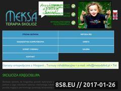 Miniaturka domeny meksa.pl