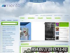 Miniaturka domeny meritohurt.pl