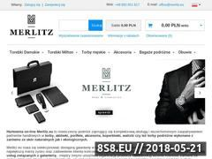 Miniaturka domeny merlitz.eu