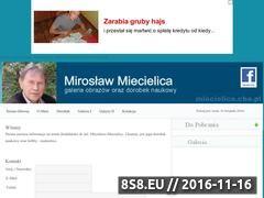 Miniaturka domeny miecielica.cba.pl