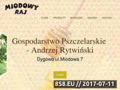 Miniaturka miodowyraj.info.pl (Pasieka - miód, miody i pszczoły)