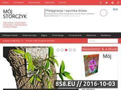 Miniaturka domeny www.mojstorczyk.pl