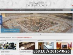 Miniaturka domeny moldysz.com