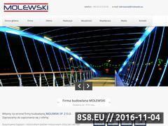 Miniaturka domeny www.molewski.eu