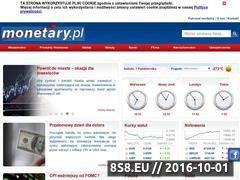 Miniaturka domeny www.monetary.pl