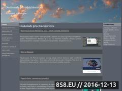 Miniaturka domeny mt-torebki.pl