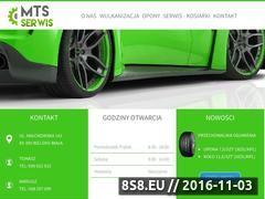 Miniaturka domeny www.mts-serwis.pl