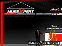 Miniaturka domeny murexpert.pl