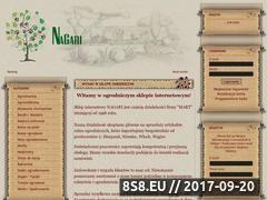 Miniaturka domeny nagari.pl