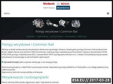 Zrzut strony Naprawa i regeneracja pomp Common Rail, VP44, VP30, PLD - Gładysek
