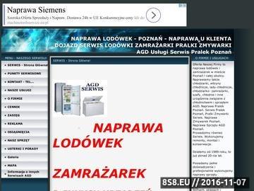 Zrzut strony Naprawa Lodówek i Zamrażarek- Serwis