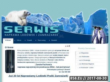 Zrzut strony Naprawa Lodówek i Zamrażarek- Serwis Poznań
