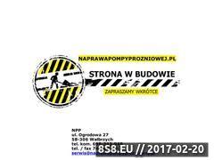 Miniaturka domeny www.naprawapompyprozniowej.pl