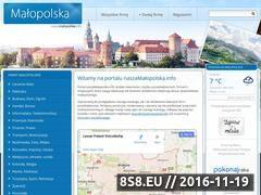 Miniaturka domeny www.naszamalopolska.info