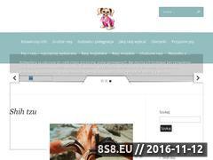 Miniaturka domeny www.naszepsy.com.pl