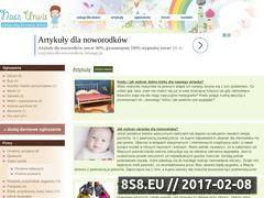 Miniaturka domeny naszurwis.pl