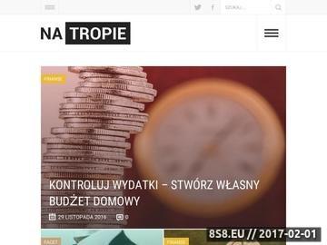 Zrzut strony Portal informacyjny