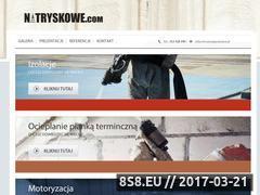 Miniaturka domeny natryskowe.com