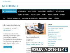 Miniaturka domeny www.netpromo.pl