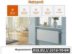 Miniaturka domeny netsanit.pl
