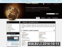 Miniaturka domeny nglobal.pl