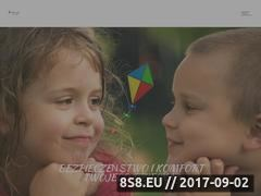 Miniaturka nibyland.eu (Sklep z wózkami i fotelikami dla dzieci)