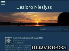 Miniaturka domeny www.nieslysz.utopia-team.pl