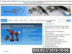 Miniaturka domeny www.nirostal.pl