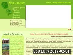 Miniaturka domeny www.noclegi-kostrzyn.comweb.pl