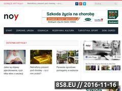 Miniaturka domeny noy.pl