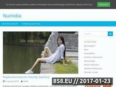 Miniaturka domeny numidia.pl