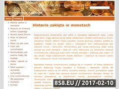 Miniaturka domeny numizmatyka-szczecin.pl