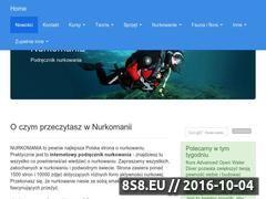 Miniaturka domeny www.nurkomania.pl