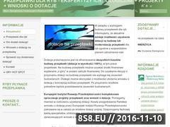 Miniaturka www.ochronaryb.pl (Projekty przepławek dla ryb i wnioski o dotacje)