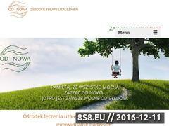 Miniaturka domeny www.odnowa24h.pl