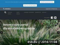 Miniaturka domeny ogrodeus.pl