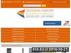 Miniaturka domeny www.ogrzewanie24h.pl