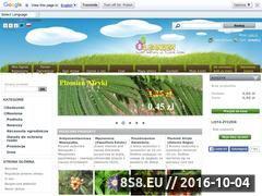 Miniaturka www.oleander.pl (Rodzinne gospodarstwo ogrodnicze Oleander)