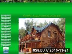 Miniaturka domeny ow-jaszczurka.com.pl
