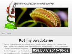 Miniaturka domeny www.owadozery.pl