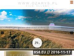 Miniaturka domeny www.ozarys.pl